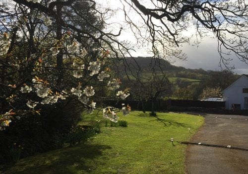 Countryside views across the fields with blossom on the trees