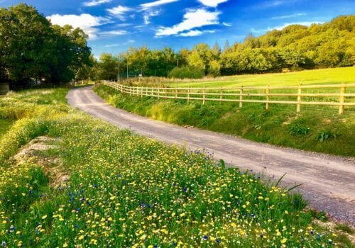 Delightfully drive up to secluded Devon Holiday Home