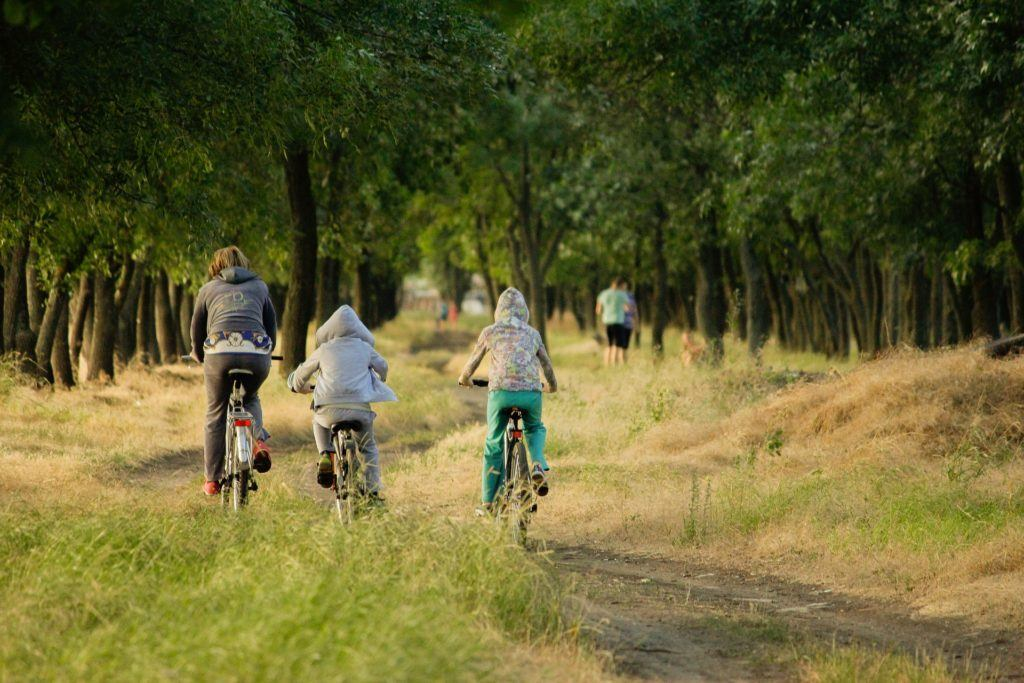 Activity family cycling in the New Forest