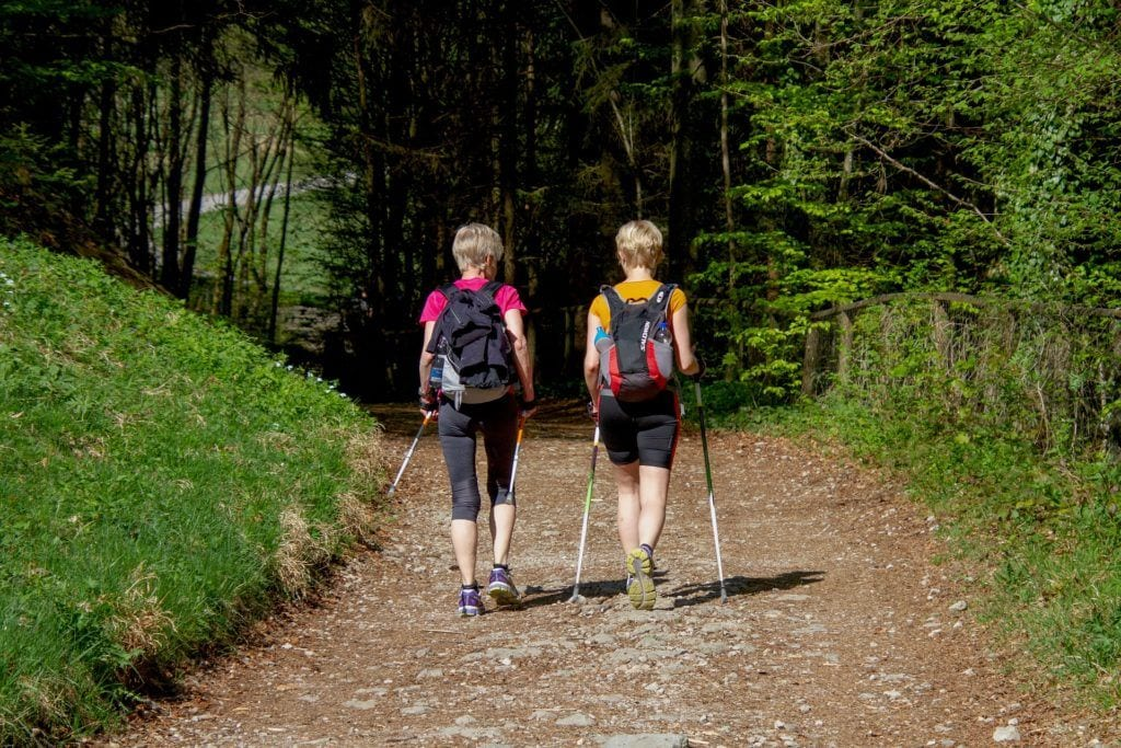 2 friends walking activities in summer in the New Forest