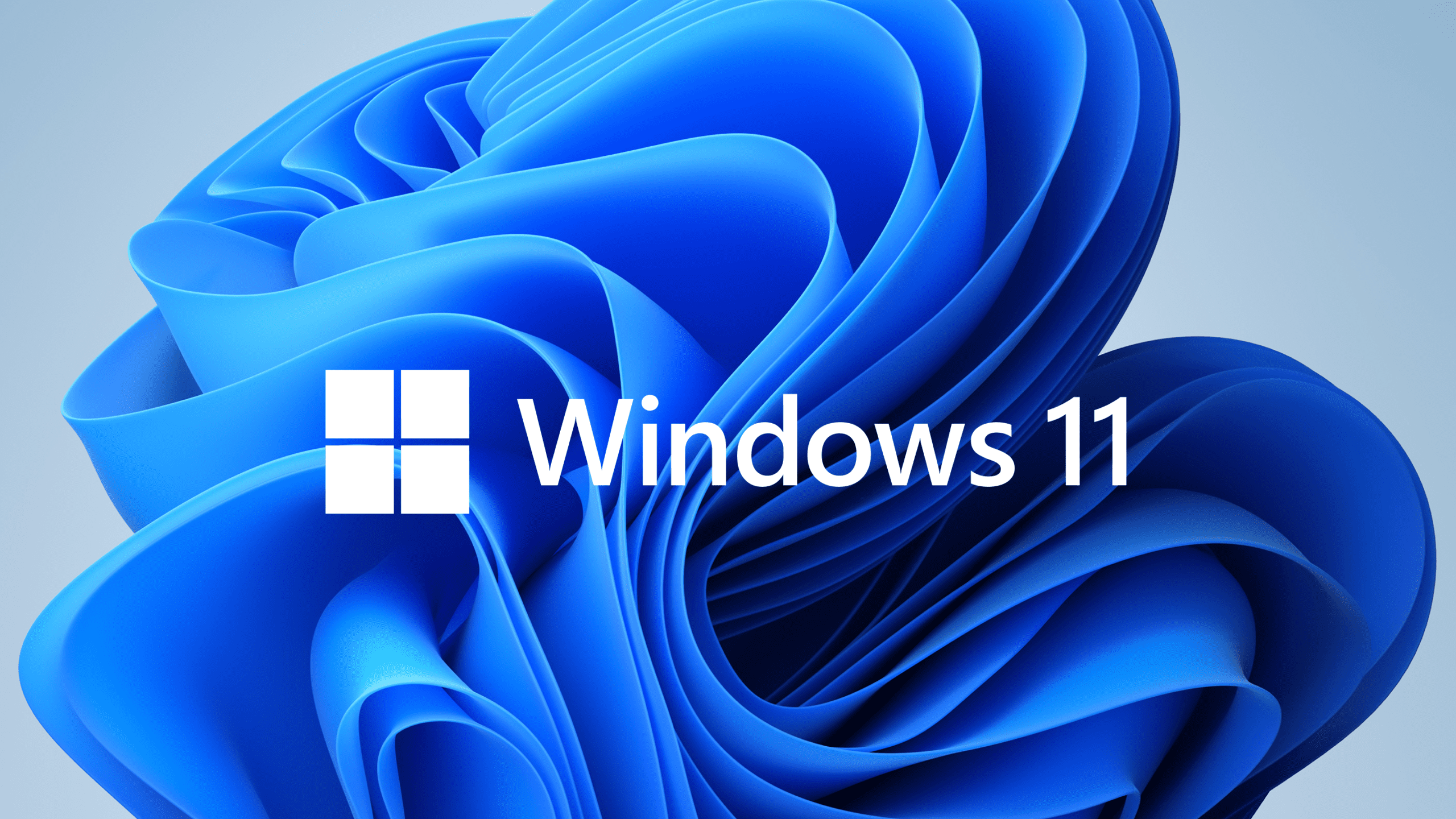 What Are The Features Of Windows 11?