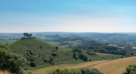 Colmers Hill from Quarr Hill
