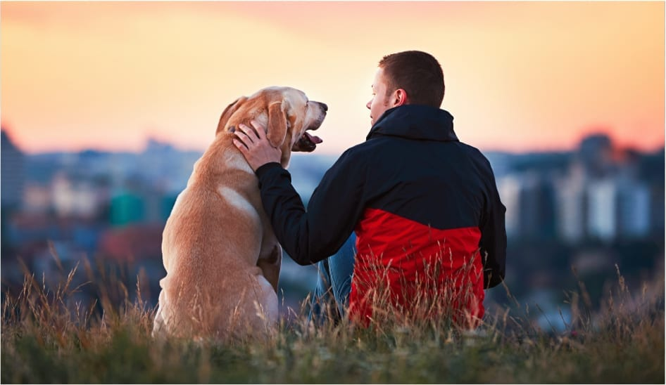 A man and his dog enjoying a sunset view.