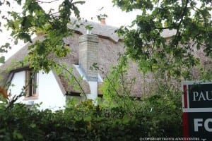 buying-thatched-properties
