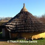 The Danebury Roundhouse   Thatch Advice Centre
