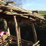 Thatched Iron Age Toilet   Thatch Advice Centre