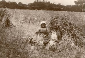 Sheaves in Stooks anny Adams parents