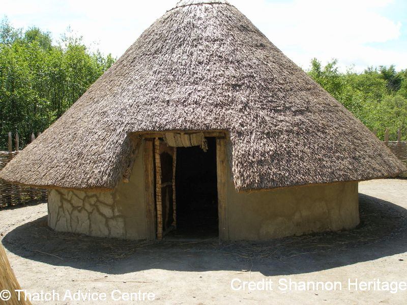 Thatch Advice Centre Article - Shannon Heritage picture