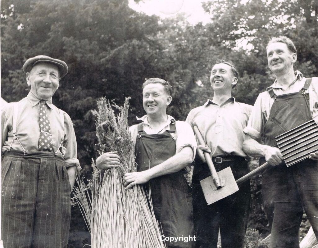 Breckland Society journal Reeve thatching family