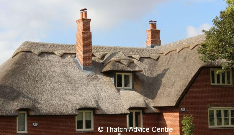 Stamp Duty Holiday and Thatch for Sale