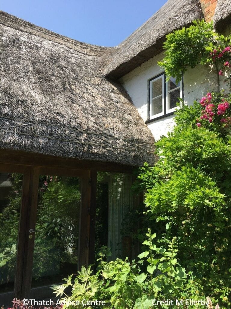 Architecture - thatched sunroom extension, join