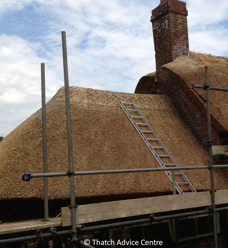 Thatching Quotations - Scaffolding